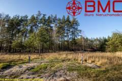 Oferta Uzbrojona działka z własnym lasem Kamińsko(22+34)