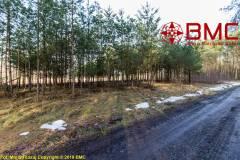 Oferta Działka na uboczu pod lasem w Niwkach