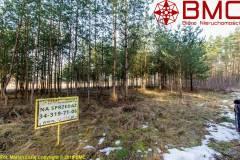 Oferta Działka budowlana 1060m2 w Niwkach, na skraju lasu