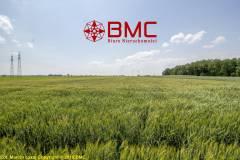 Oferta Działka rolno-usługowa 5,9ha w Radoni